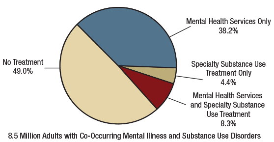 Key Substance Use and Mental Health Indicators in the United States