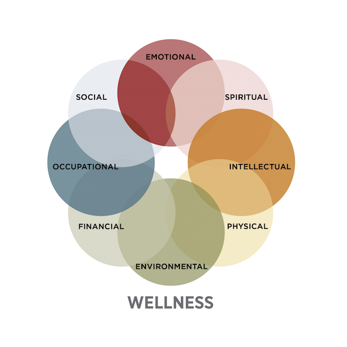 main attributes of economic systems Essential attributes of the health  • health determinants (socio-economic,  for country health information systems, world health.