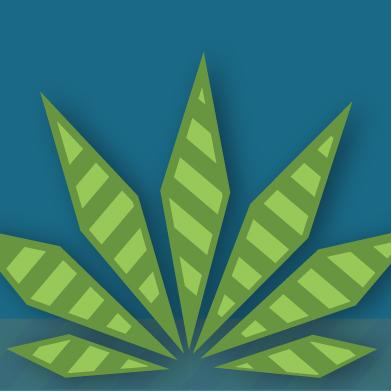 Real Risks of Marijuana Use